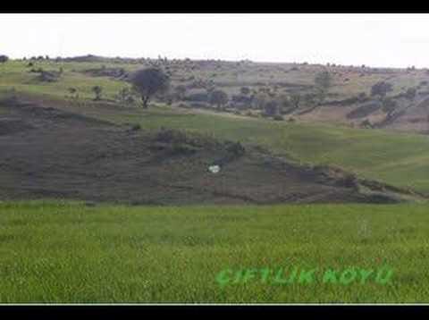 Ciftlik Köyünden görüntüler