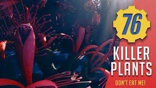 Carnivorous Plants - Most Dangerous Plants | Fallout 76