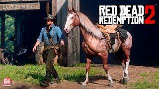 RED DEAD REDEMPTION 2 - ENCONTREI ALGO REALMENTE INCRÍVEL!