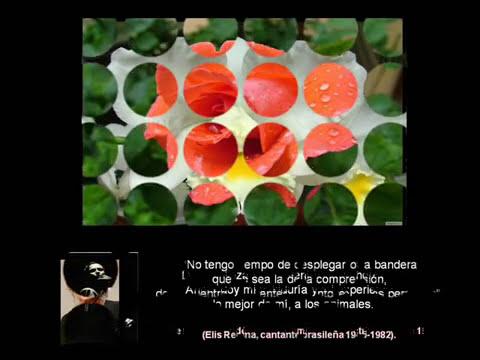 FLORES Y MUJERES FAMOSAS (REFLECCIONES DE LA VIDA 2)