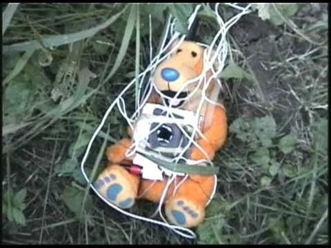 RC Plane and Amateur RadioTV Bear
