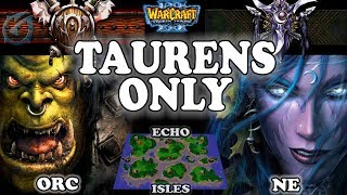 Grubby | Warcraft 3 TFT | 1.29 LIVE | ORC v NE on Echo Isles - Taurens Only