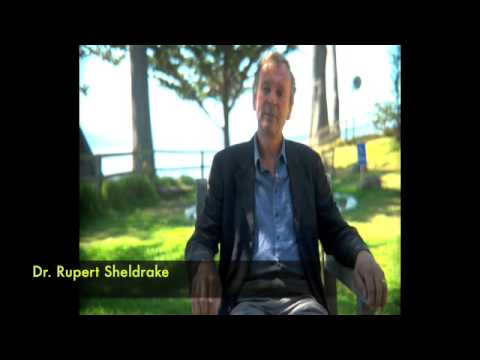 Dr. Rupert Sheldrake talks about his collaborations with Dr. Chris French