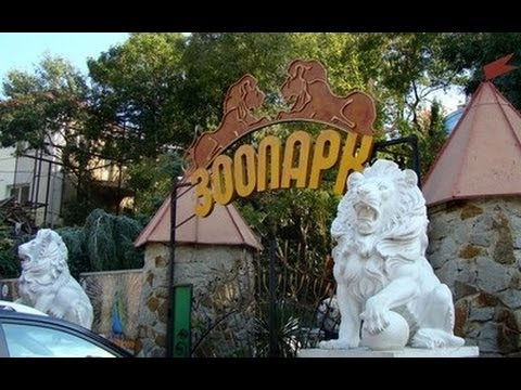 VLOG: Ялтинский зоопарк Сказка