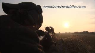 Jagd in Tschechien - Hunters Video