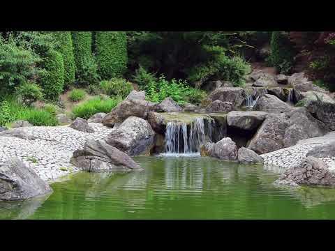 Japanischer Garten Rheinaue Bonn - Japanese Garden