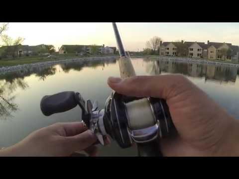 Bass Fishing at Asherton Blvd Ponds 5/7/14