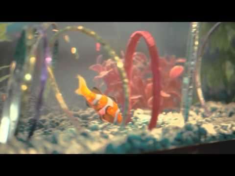 ZURU's Robo Fish RC (Remote Control) Official TVC_ZURU
