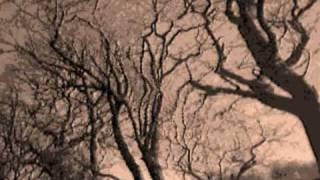 Watch Cocteau Twins Blind Dumb Deaf video