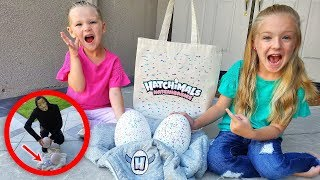Game Master Leaves Mystery Eggs and Top Secret Message!! Hatchimals HatchiBabies!