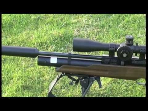 Rabbit Hunting with the HW100 Air Rifle  Weihrauch HW100KT 177 Model