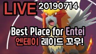 [LIVE] 엔테이 이로치 과연?! 포켓몬고 Pokémon GO  Entei Hunting