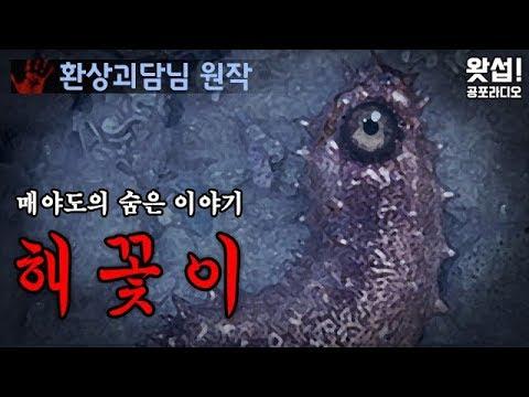 [공포단편] 해꽃이 - 매야도의 숨은 이야기 (환상괴담님 원작)|왓섭! 공포라디오