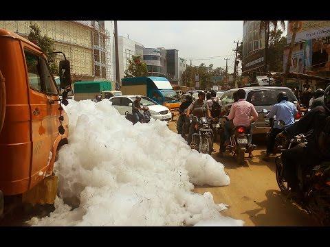 Varthur Lake (ವರ್ತೂರು ಕೆರೆ) most polluted lake in Bengaluru