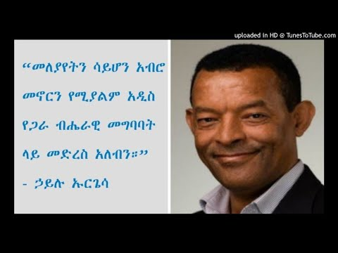 Hailu Urgessa: Opinion On Oromia's Special Interest In Addis Ababa - SBS Amharic
