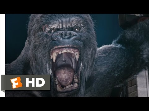 King Kong (610) Movie CLIP - Kongs Rampage (2005) HD