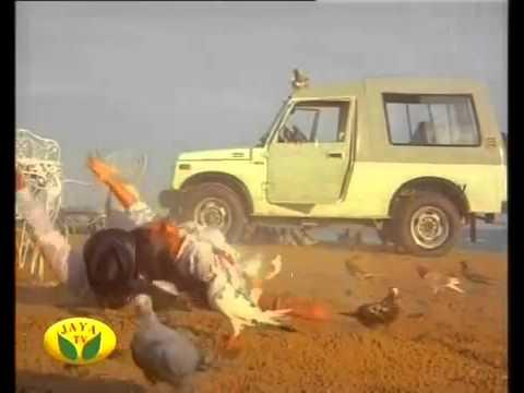 Mallu Big Boobed Suchitra Hot & Rare Cleavage     YouTube thumbnail