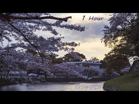 Relaxing Time - 1 Hour of Top Soothing Music to Reduce Stress Relaxing Music