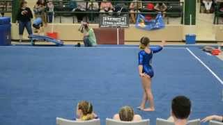 Atia 39 S 1st Place Level 3 Floor Routine At The 2015 Il State Championship Meet Gijo