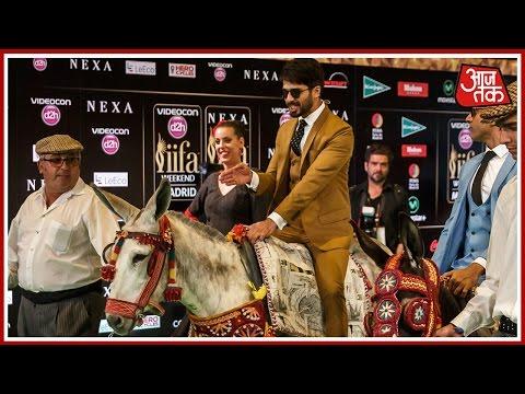 IIFA Awards 2016: Shahid Kapoor Hits The Green Carpet On A Donkey