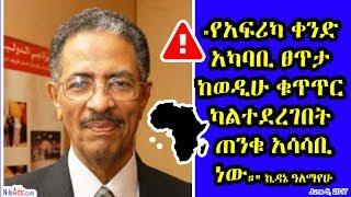 """""""የአፍሪካ ቀንድ አካባቢ ፀጥታ..."""" አቶ ኪዳኔ ዓለማየሁ Interview with Kidane Alemayehu on Horn of Africa - SBS"""
