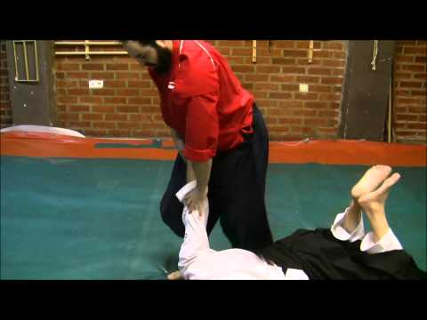 Ogawa Ryu - Aikijujutsu - Training during International Encounter - 2014 Image 1