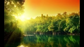 Unbelievably Relaxing Music   Soothing Yoga Music, Meditation Music