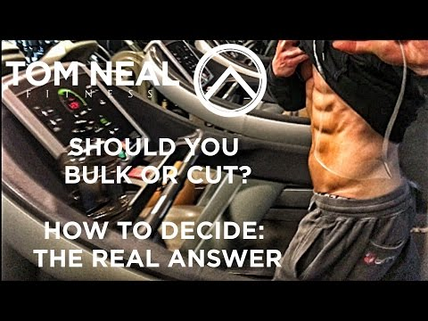 Should You Bulk or Cut? THE REAL ANSWER