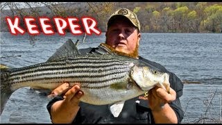 MNC Outdoors - Striper Fishing in the Connecticut River