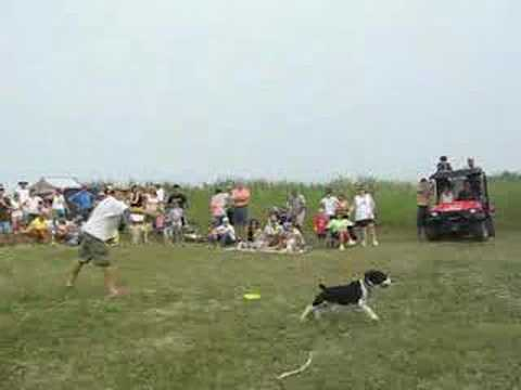 Mr. Banjo in the 2006 Frisbee competition, Caseville, MI