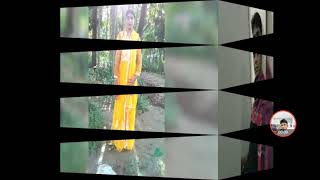 3xxx video