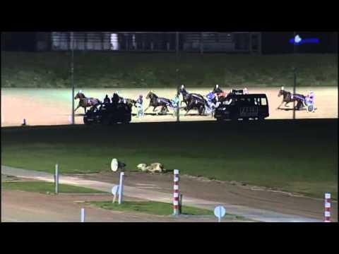 Vidéo de la course PMU PRIX ABE LENSTRA (BOKO CHAMPIONS CHALLENGE)