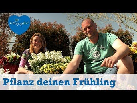 Gartentipps: So Pflanzt Du Den Frühling // GartenTor