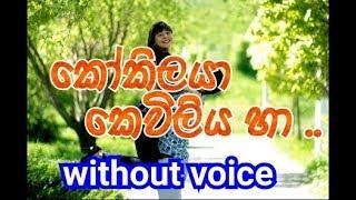 Kokilaya keviliya ha Karaoke (without voice) කෝකිලයා, කෙවිලිය හා..