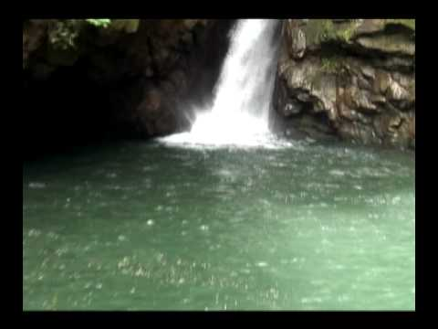 Pesca Artesanal del camarón de rio Caruao Osma, Todasana, La Sabana, Chuspa