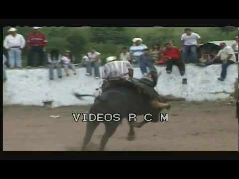 Accidentes de Jaripeos parte 1