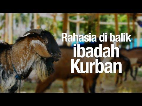 Ceramah Singkat: Rahasia di balik Ibadah Kurban - Ustadz Abdullah Taslim, MA.