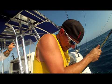 Amberjack Fishing Tampa Bay - 75 Pound AJ Back Breaking Reel Screamer!!