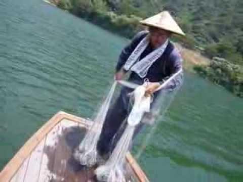 Parformance of the Cast net fishing  @ Shimanto river, Kochi Prefecture in Japan!