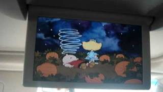 Peanuts! (Charlie Brown) It