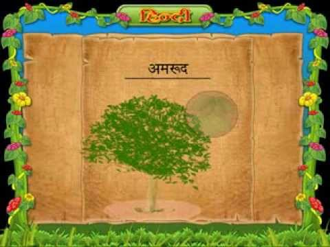 tamil essays about forest Results for forest tamil essays translation from english to tamil api call  download a tmx contribute a tmx human contributions from professional.