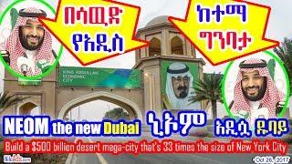 በሳዉድ አረቢያ የአዲስ ከተማ ግንባታ - Saudi New City - DW