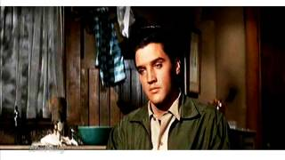 Watch Elvis Presley I Slipped I Stumbled I Fell video