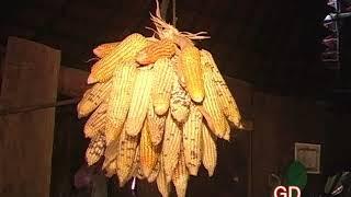 Ua Teb #15 Part 1 GD Entertainment