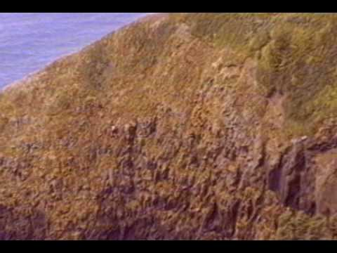 Helicopter Pulls Man off Cliff