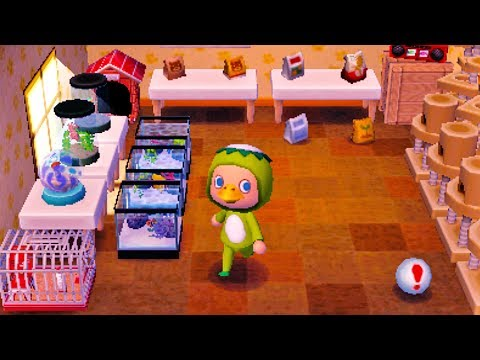 Animal Crossing New Leaf How To Get A Pet Dog