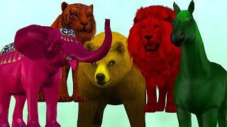 Colors Animals Finger Family Song For Kids || Horse Lion Tiger Nursery Rhymes Children Toddlers