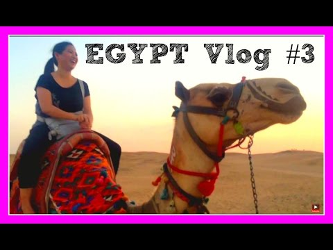 Mysterious Egypt Vlog # 3 - Market, Camel and Outdoor Dance Party