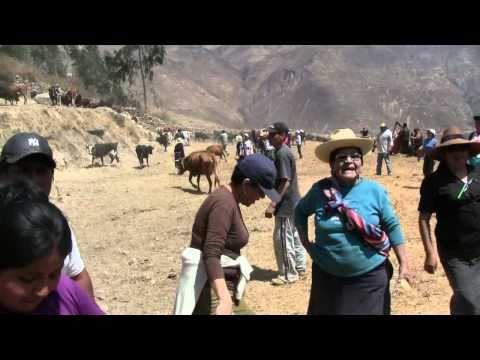 Huayopampa-Rodeo-2010