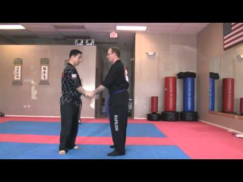 Hapkido White Belt self defense techniques Image 1
